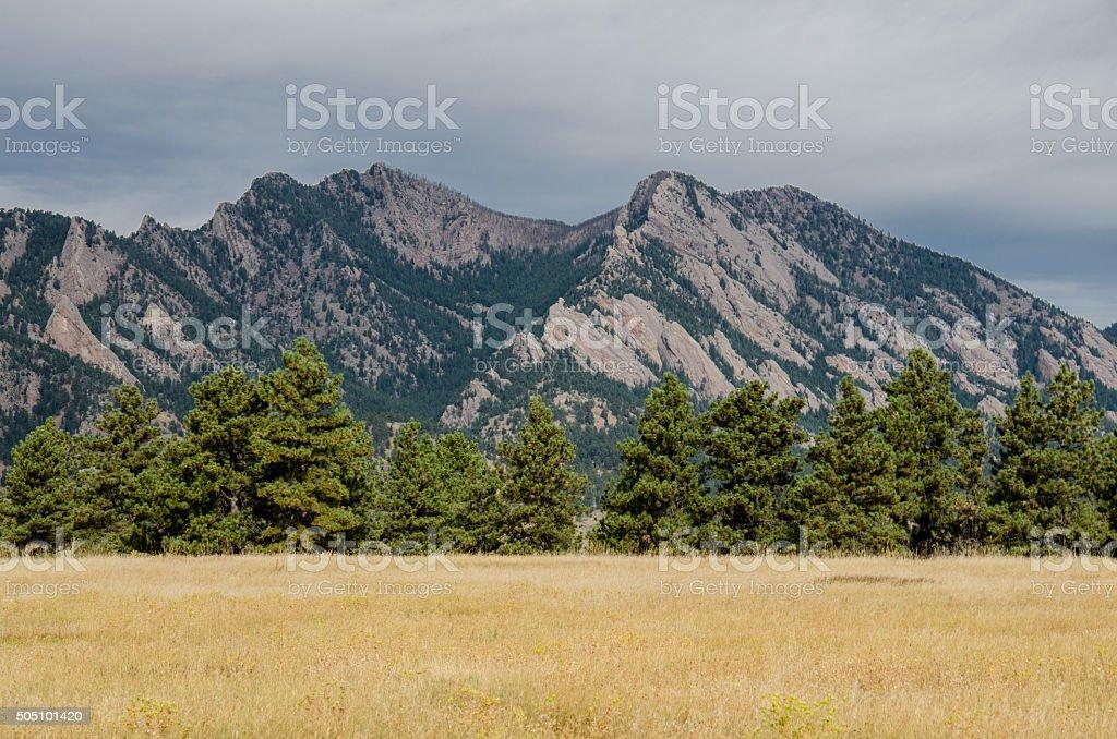 Flatiron Mountains with Pine Tree Foreground stock photo