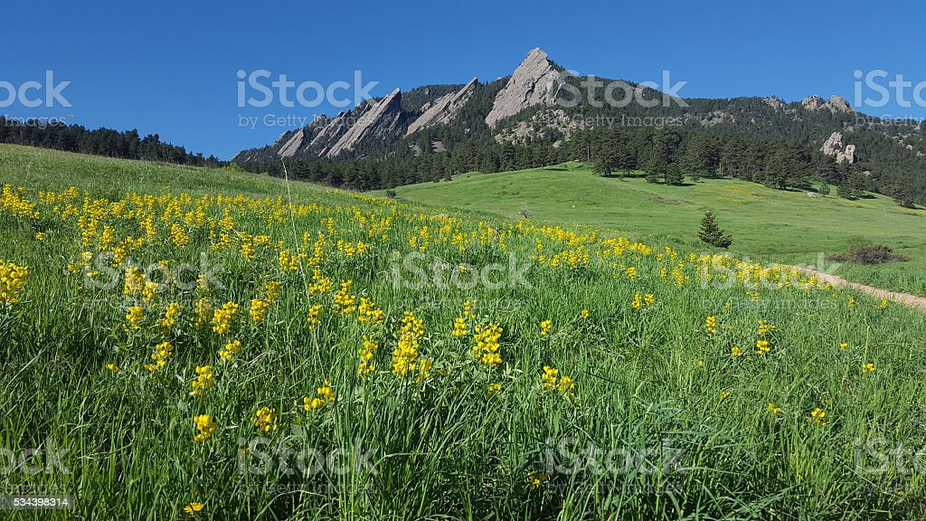 Flatirons, Boulder, Colorado in springtime stock photo