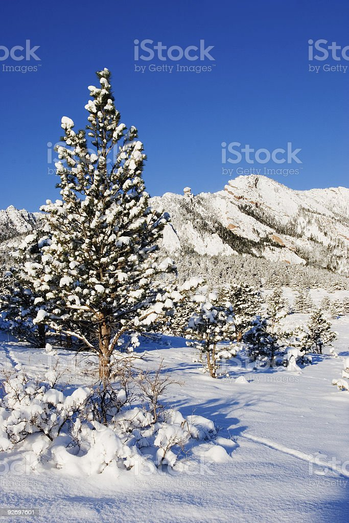 Flatirons In Snow royalty-free stock photo