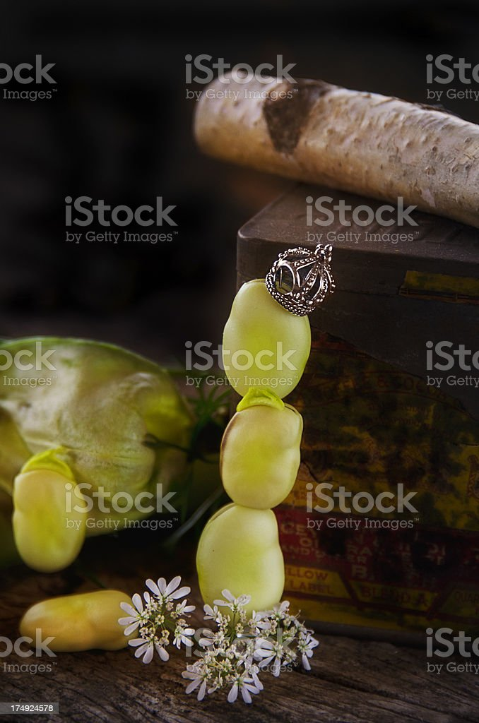 Flava Bean royalty-free stock photo