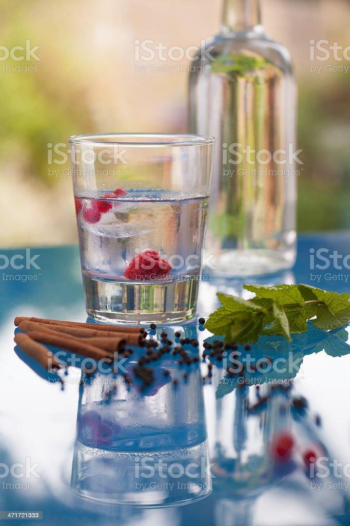 Flavoured vodka royalty-free stock photo