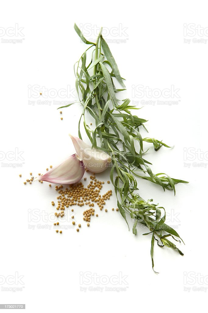 Flavouring: Tarragon, Garlic and Mustard royalty-free stock photo