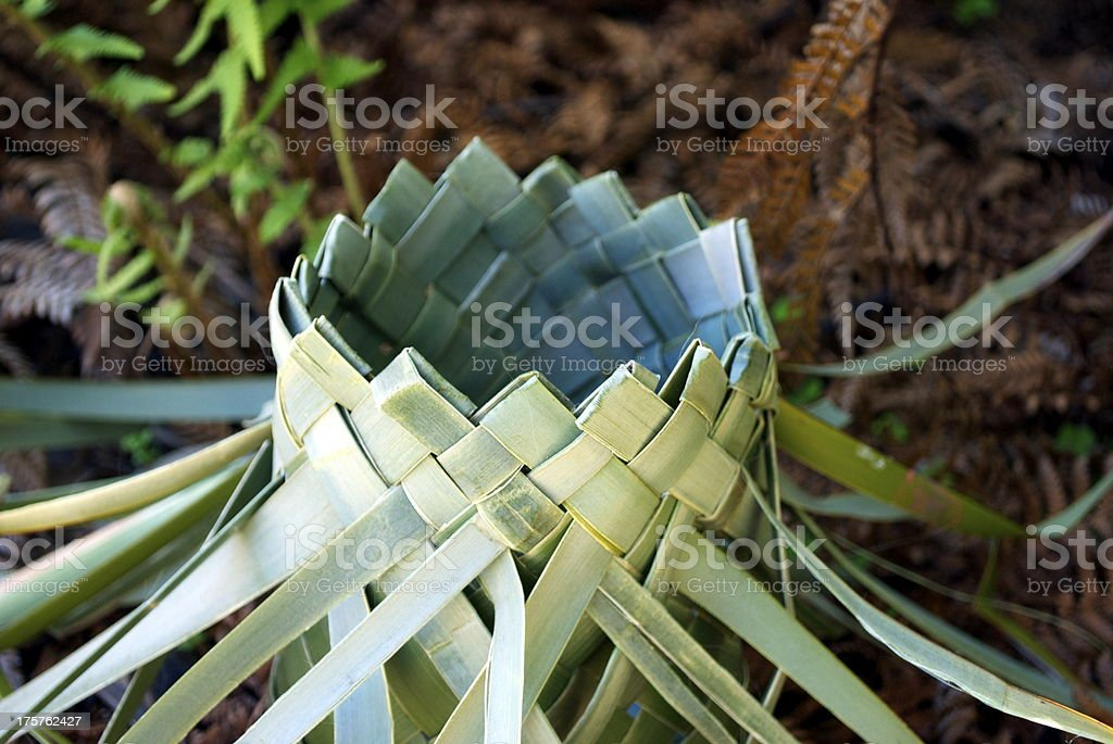 Flax Kete in Undergrowth stock photo