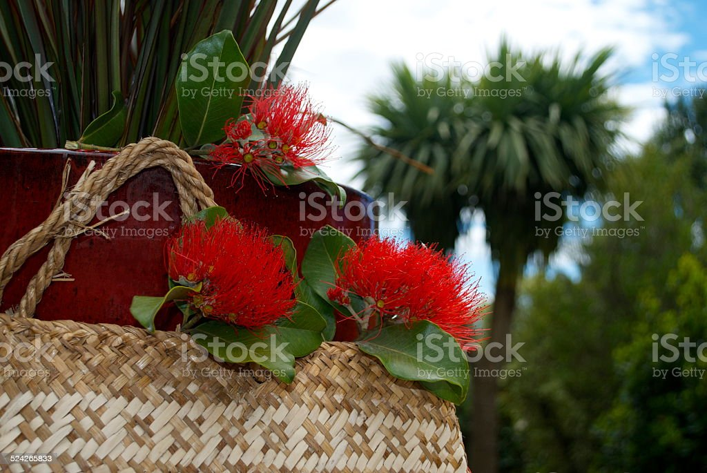 Flax Kete with Pohutakawa in Garden stock photo