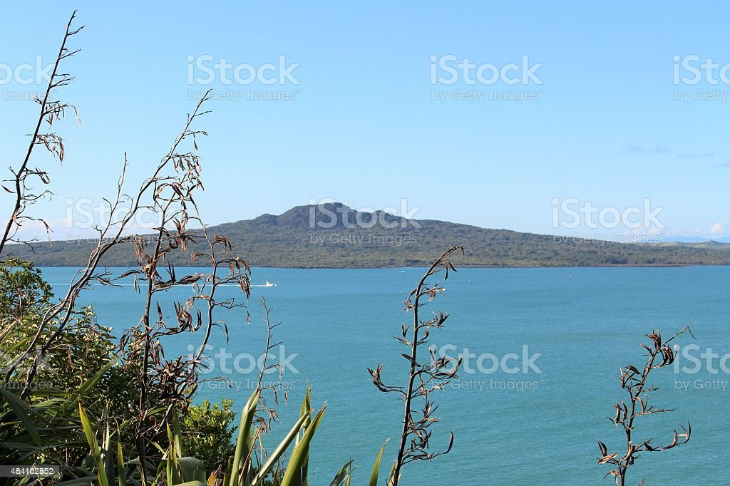 Flax, sea and a volcano stock photo
