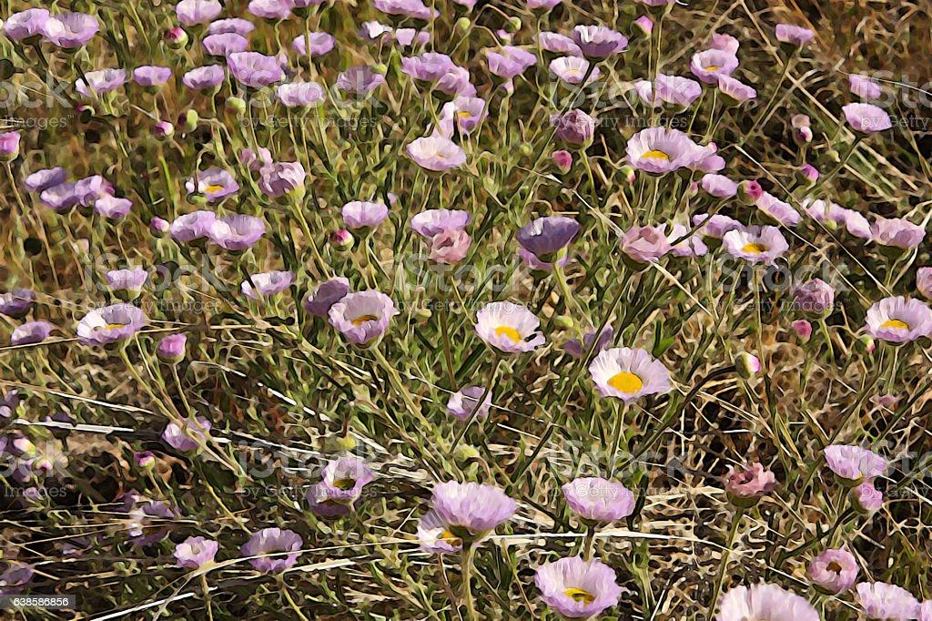 Fleabane Flowers Erigeron divergens Watercolor Painting stock photo