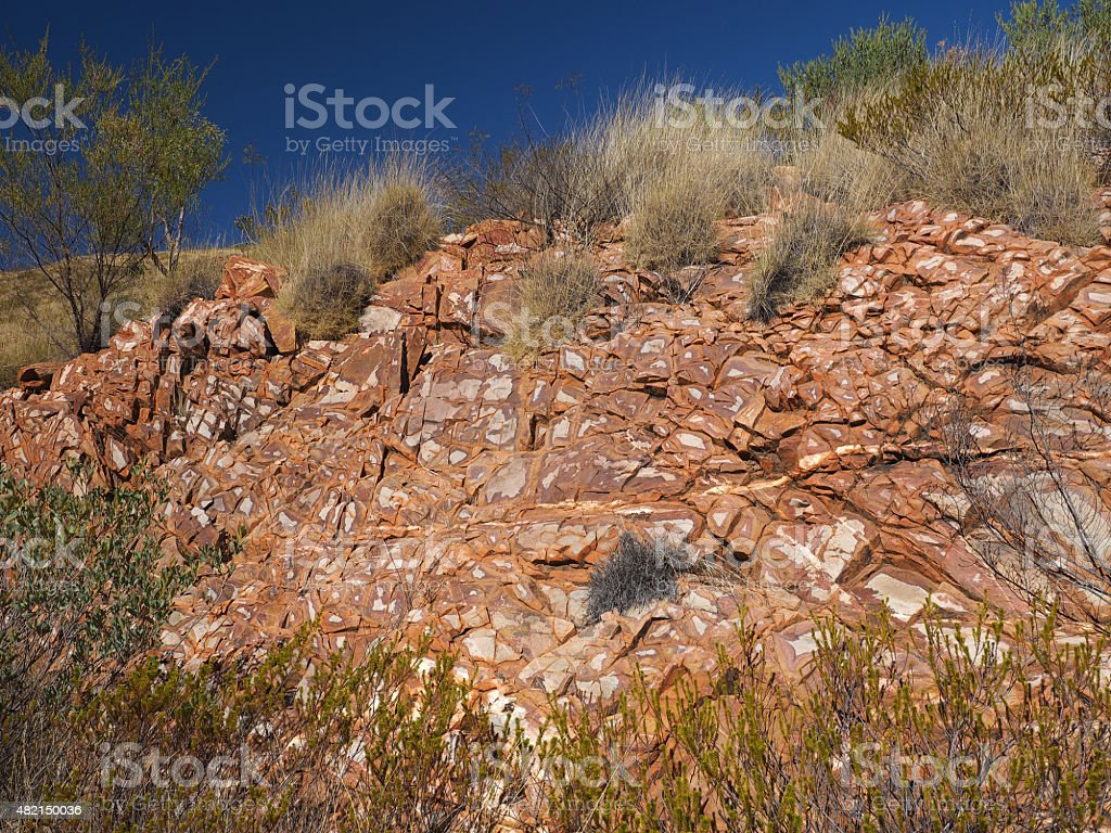 Flecked Dolomite rock and spinifex grass stock photo