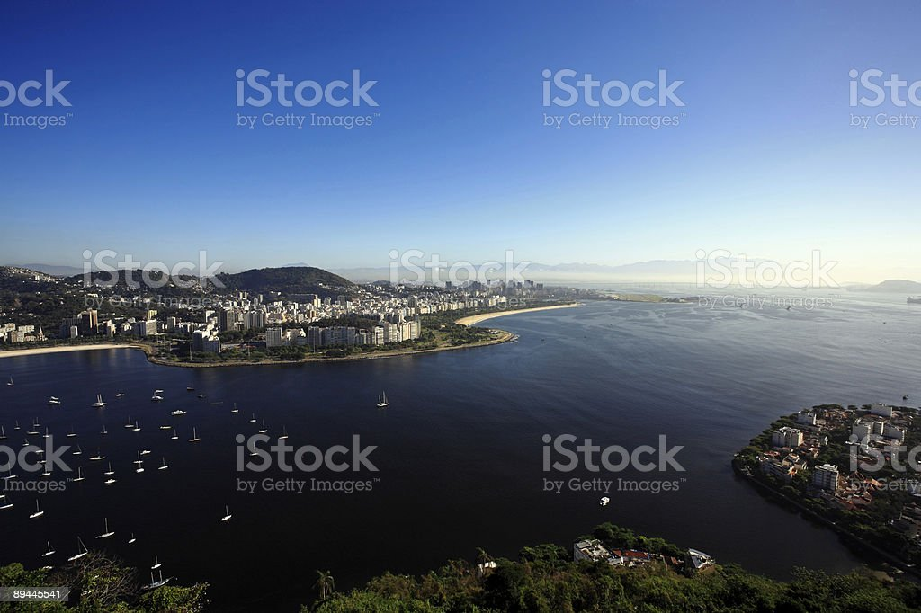 flamengo royalty-free stock photo