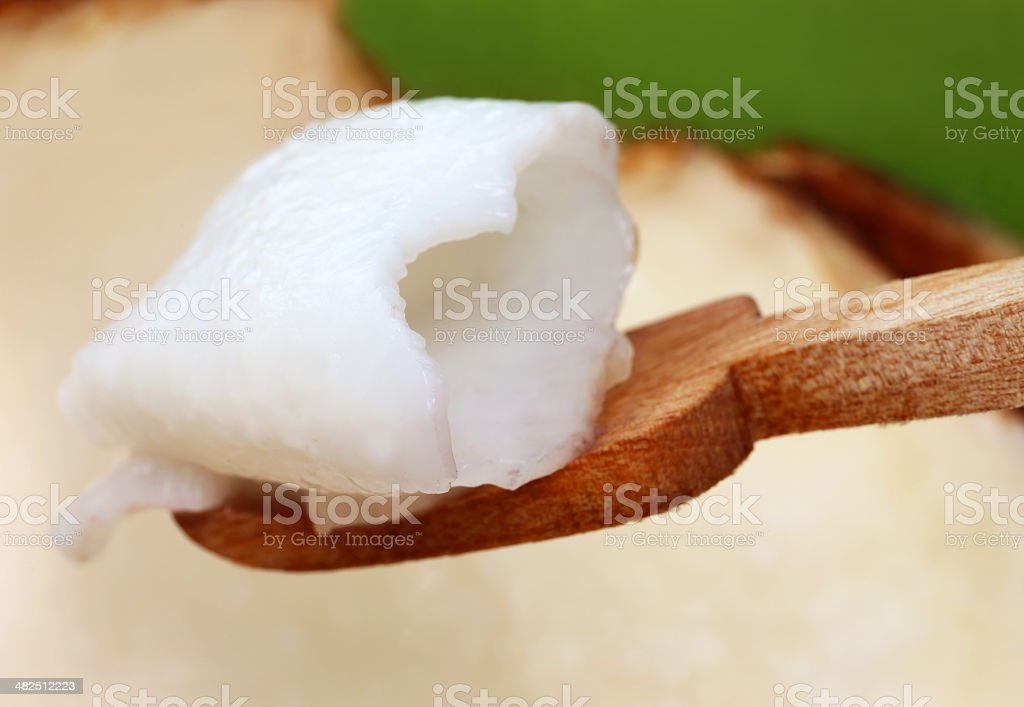 Flesh of young coconut stock photo