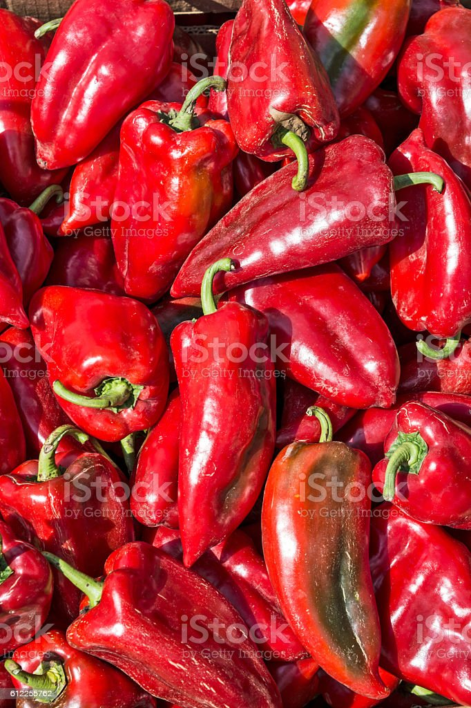 Fleshy red peppers stock photo