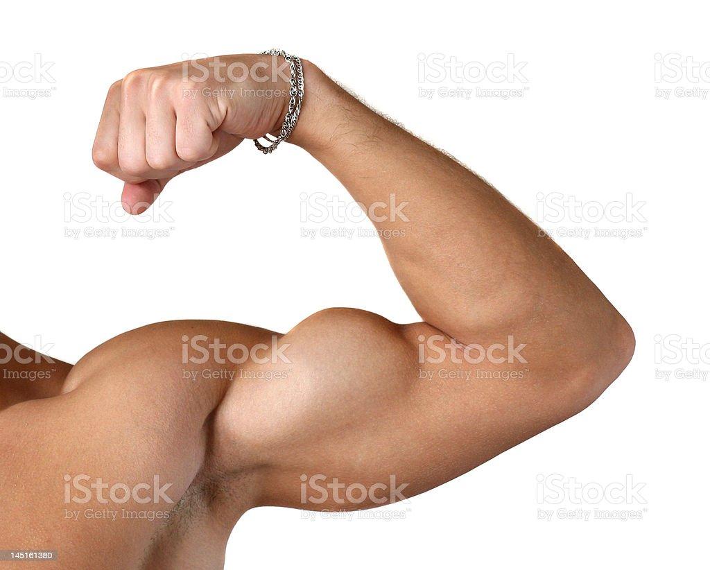 Flexed Biceps Isolated on White royalty-free stock photo