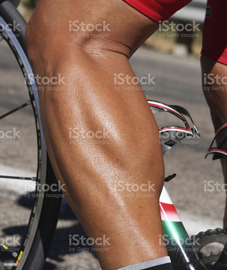 Flexed Calf Muscle of a Cyclist stock photo