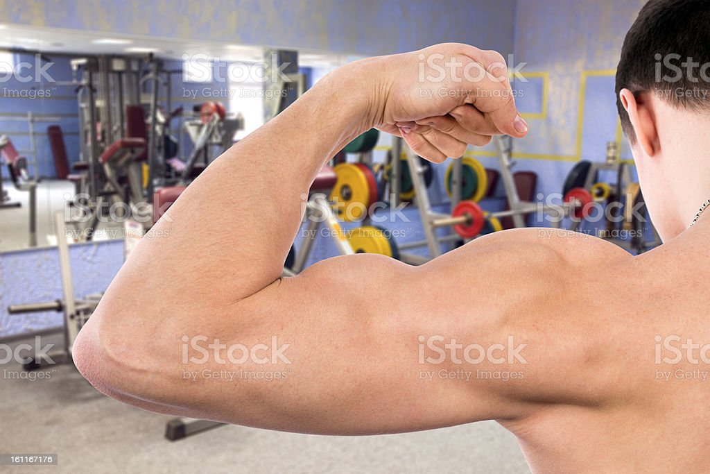 Flexing biceps in gym royalty-free stock photo
