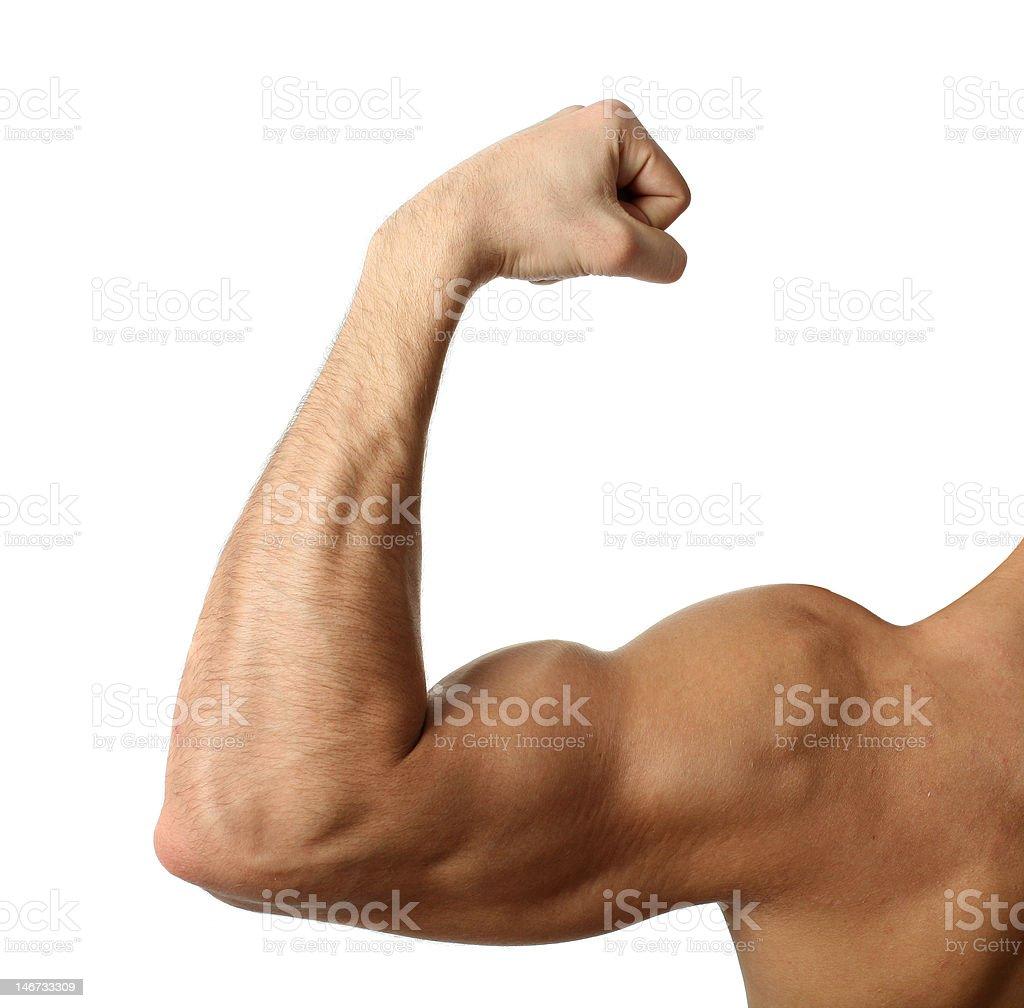 Flexing Biceps royalty-free stock photo