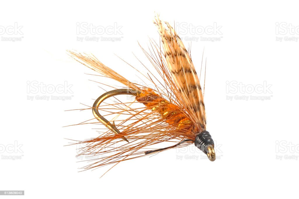Flies used when fly fishing. stock photo