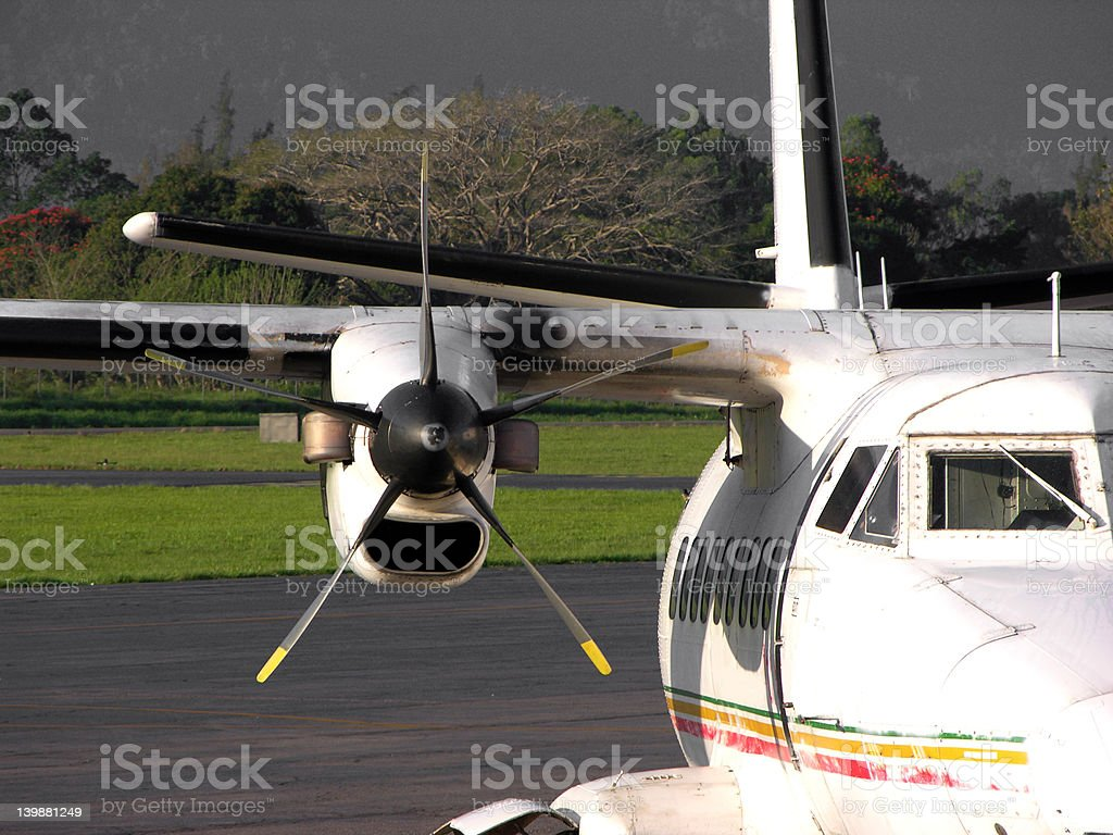 Flightless Waiting for Flight royalty-free stock photo