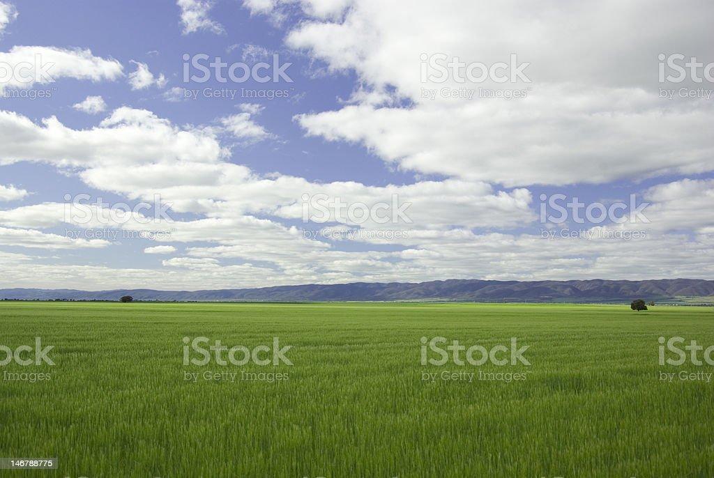 Flinders Ranges country side stock photo