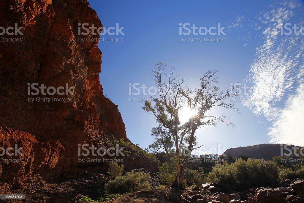 Flinders Ranges, South Australia, Australia royalty-free stock photo