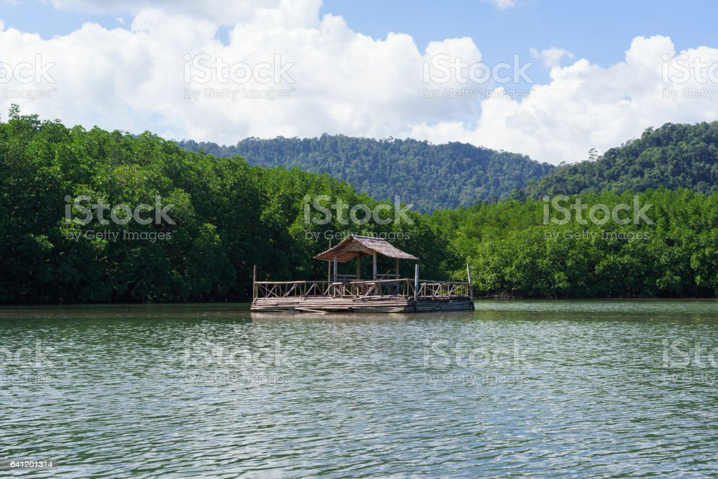 Floating bamboo raft with mangrove forest in background stock photo