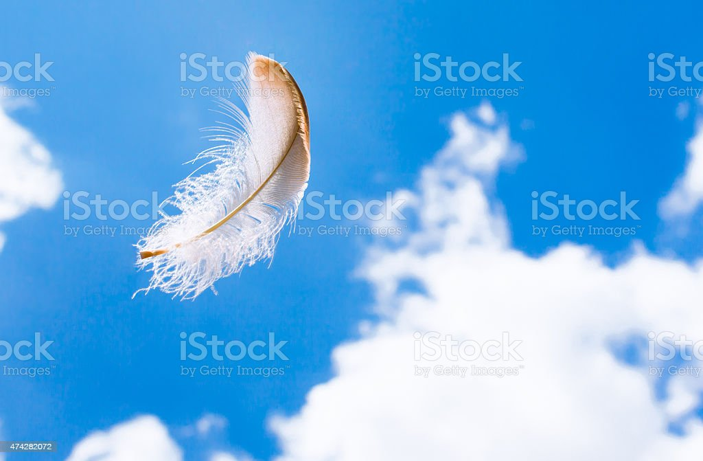 Floating feather in the sky stock photo