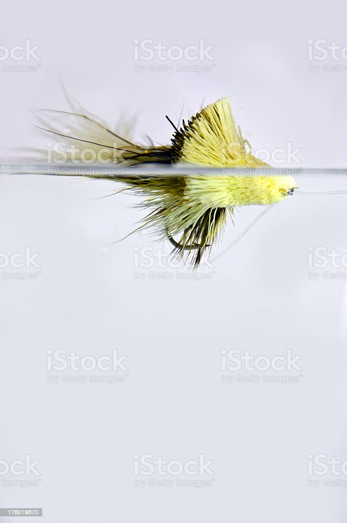 Floating Fishing Fly royalty-free stock photo