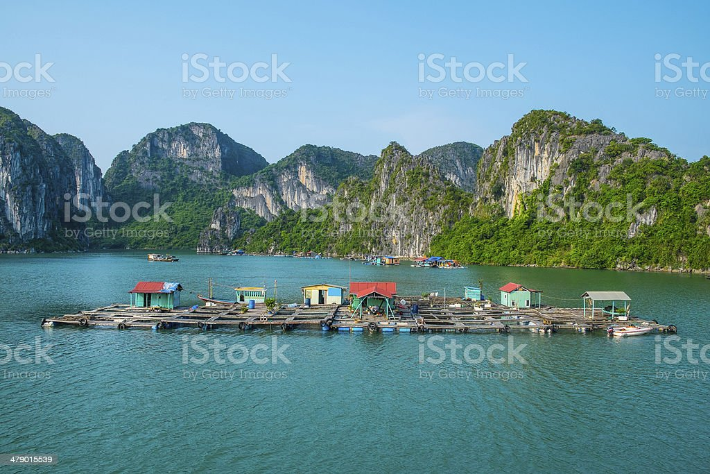 Floating fishing village in Halong Bay stock photo