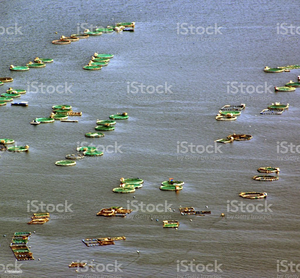 Floating fishnets on Lake Taal, Luzon Philippines stock photo