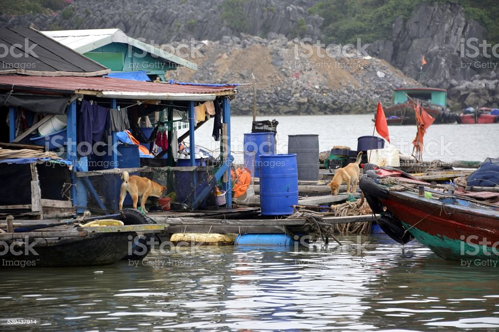 Floating houses and fishing boats on Lan Ha Bay, Vietnam stock photo