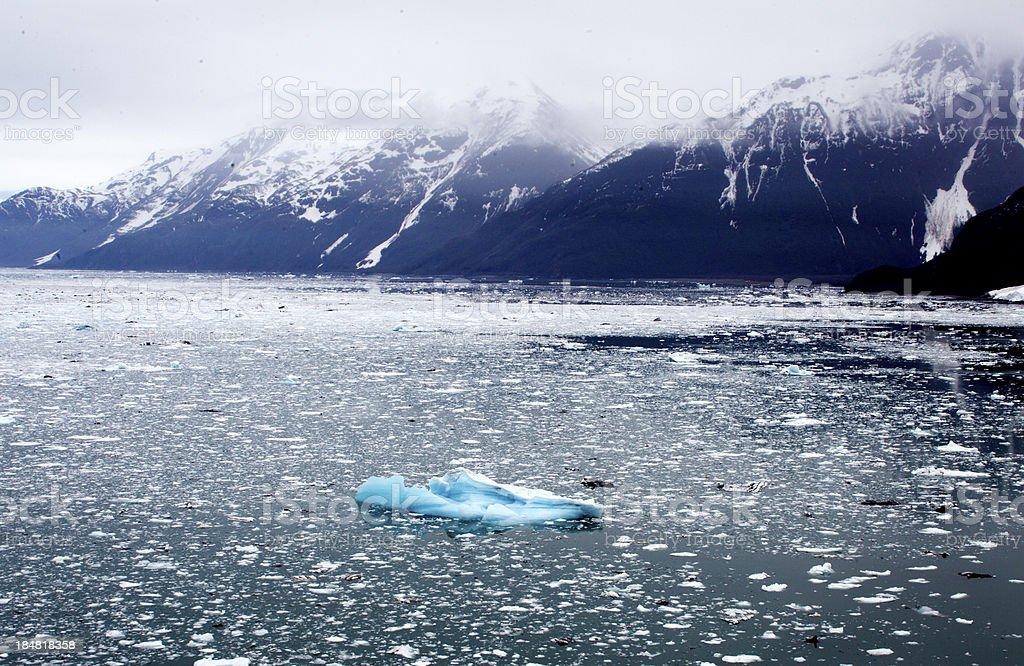 Floating Ice royalty-free stock photo