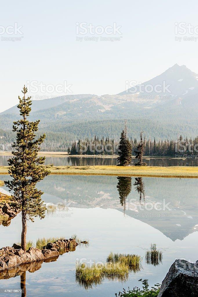 Floating Reflection stock photo