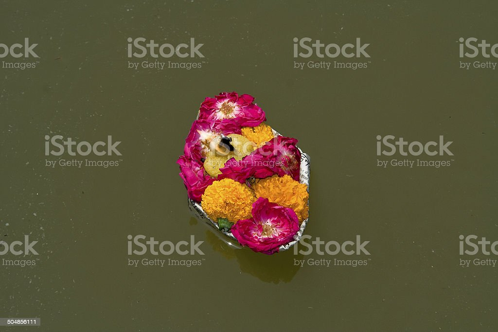 Floating Tray of Flowers stock photo