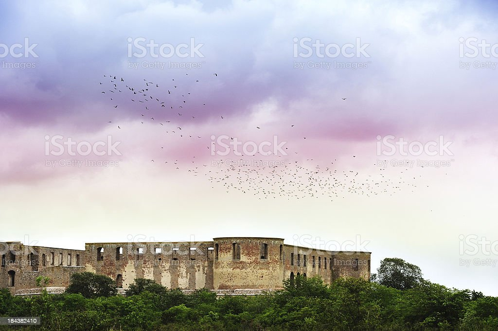 Flock of birds over castle ruin stock photo