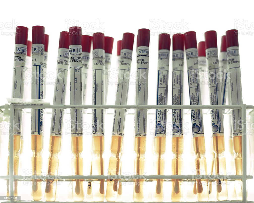 Flocked swabs royalty-free stock photo