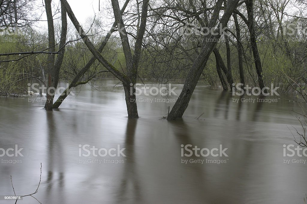 Flood stock photo