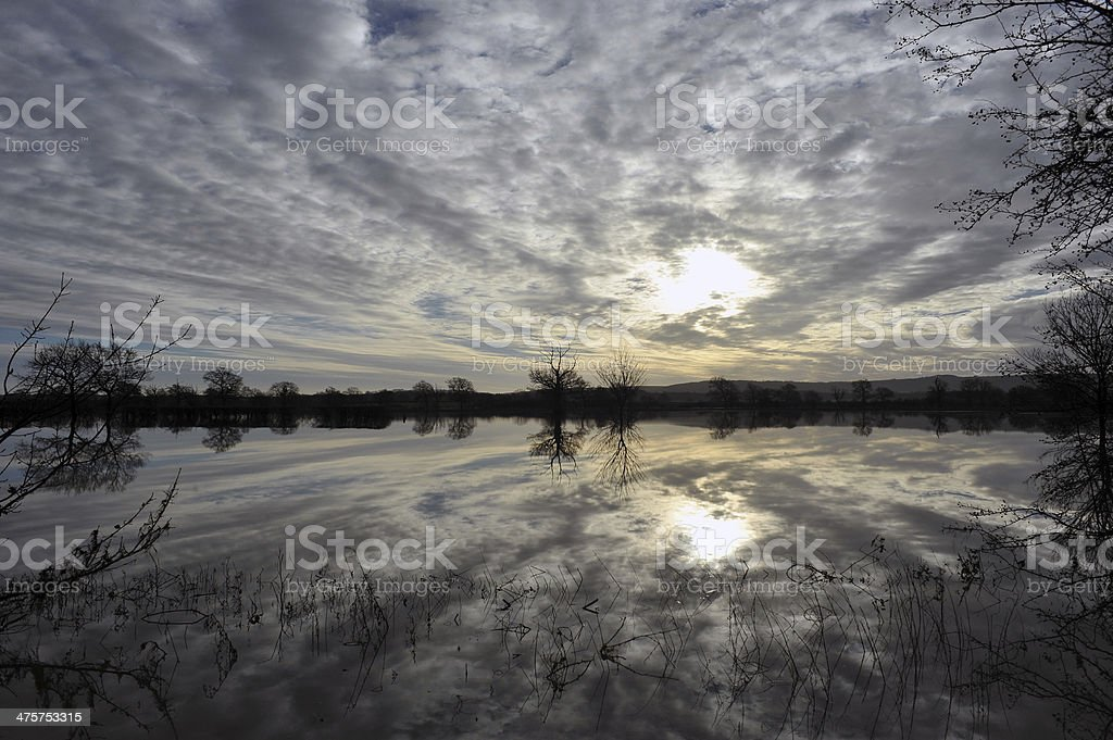 Flood Reflections royalty-free stock photo