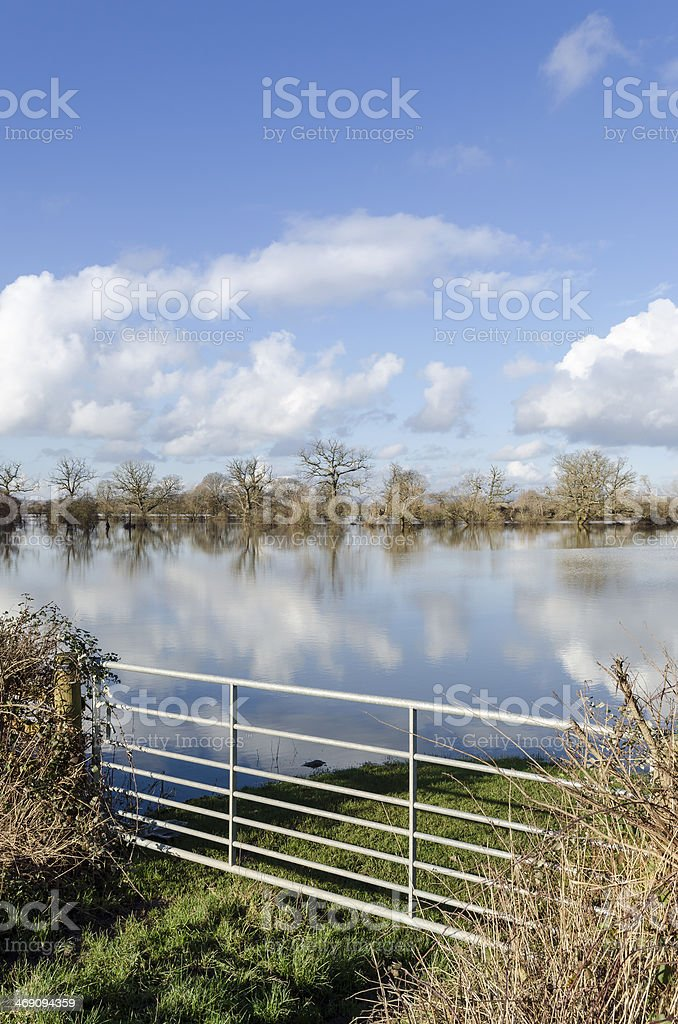 Flooded farmland royalty-free stock photo