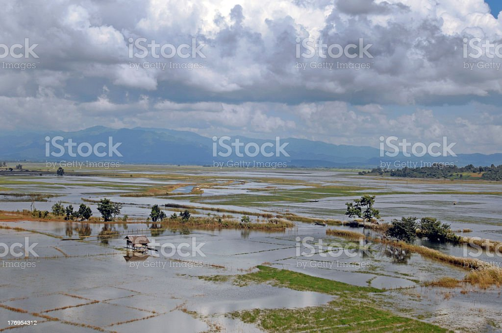Flooded fields  around Inle lake ( during monsoon season) in Burma. stock photo