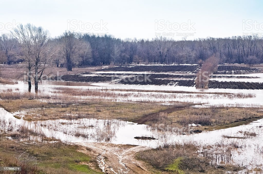Flooded fields. The spring flood royalty-free stock photo