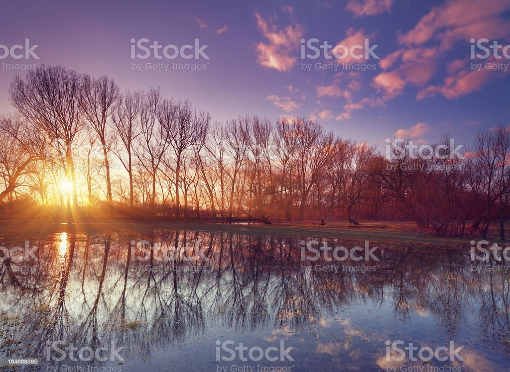flooded land at sunset royalty-free stock photo