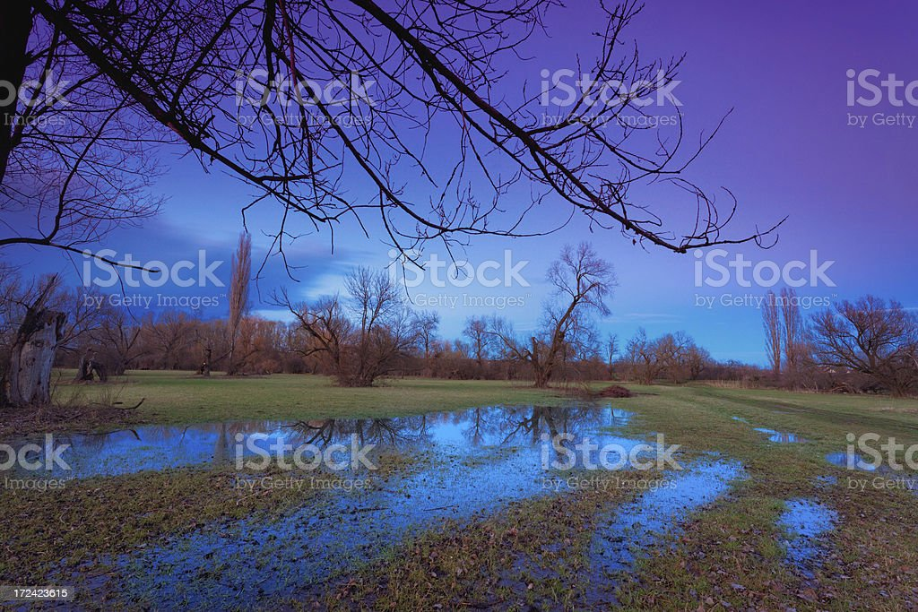 flooded land in the evening royalty-free stock photo