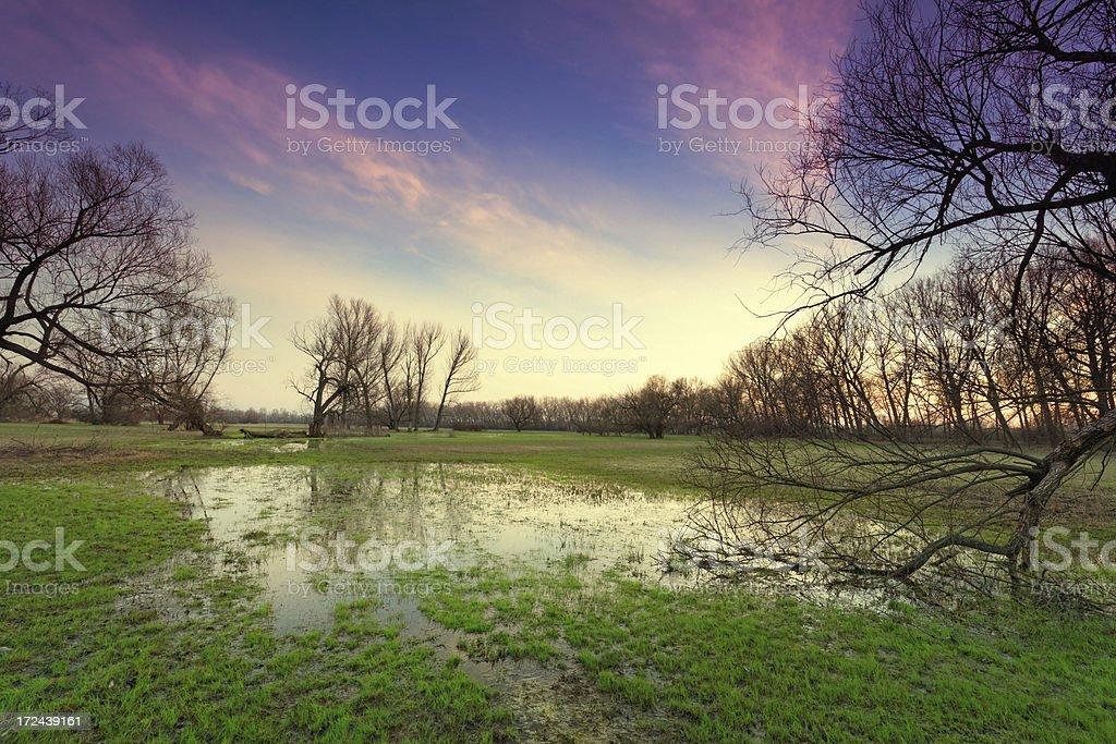flooded land royalty-free stock photo