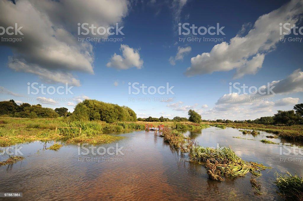 Flooded Marshland royalty-free stock photo
