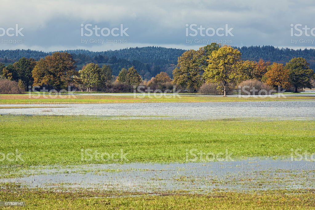 Flooded Meadow in Autumn Slovenia stock photo