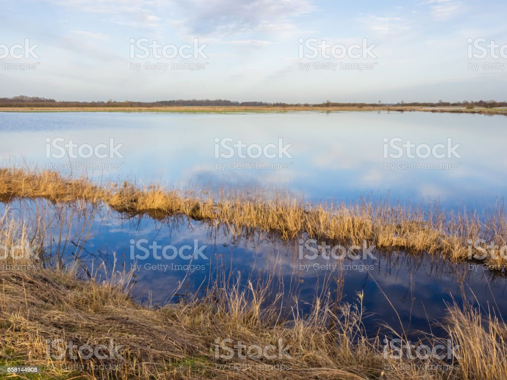 Flooded meadows at swamp Teufelsmoor in Germany near city Worpswede stock photo