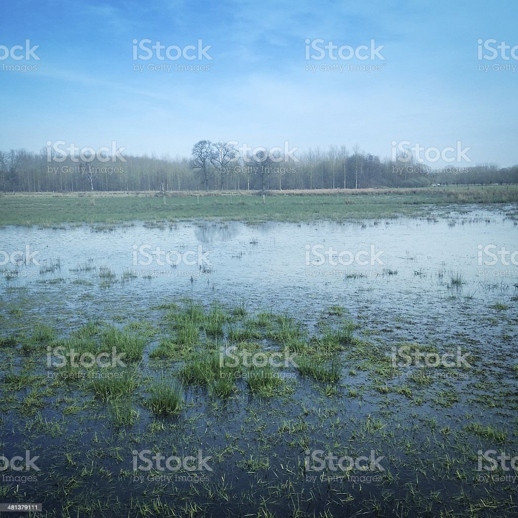 Flooded pasture royalty-free stock photo