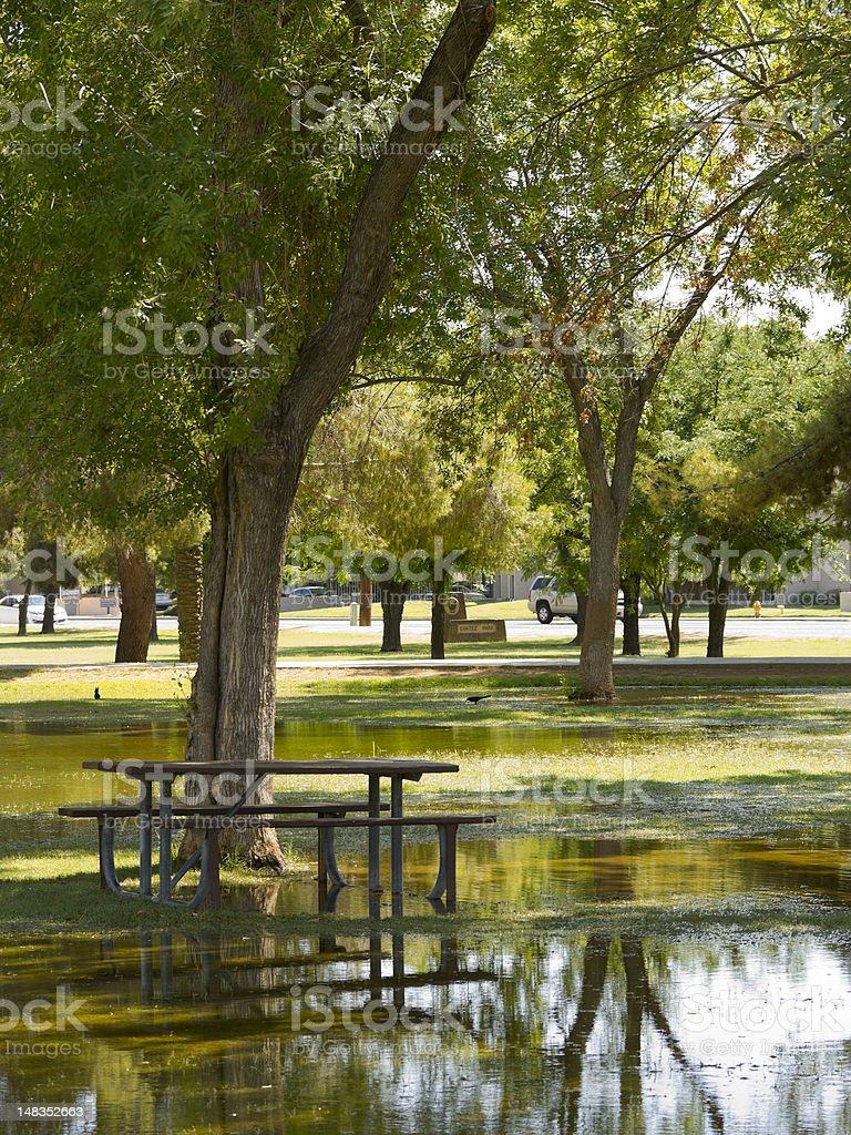 Flooded Picnic Area, Monsoon in Phoenix, AZ royalty-free stock photo