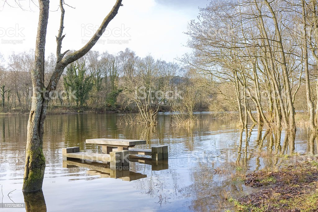 Flooded Picnic Area royalty-free stock photo
