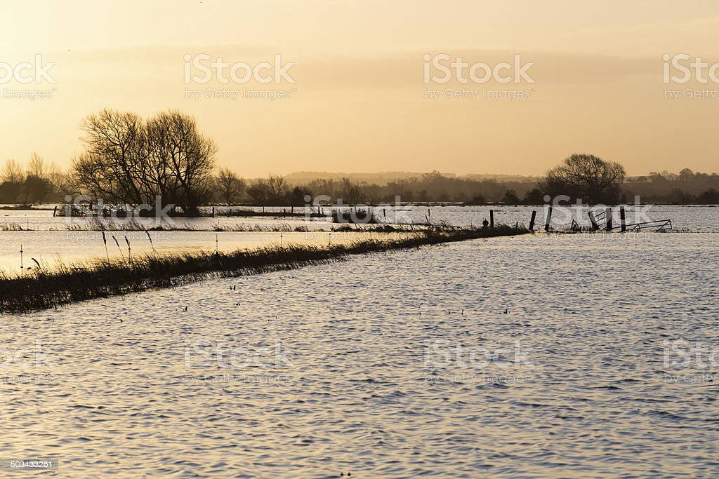 Flooded Somerset Levels stock photo
