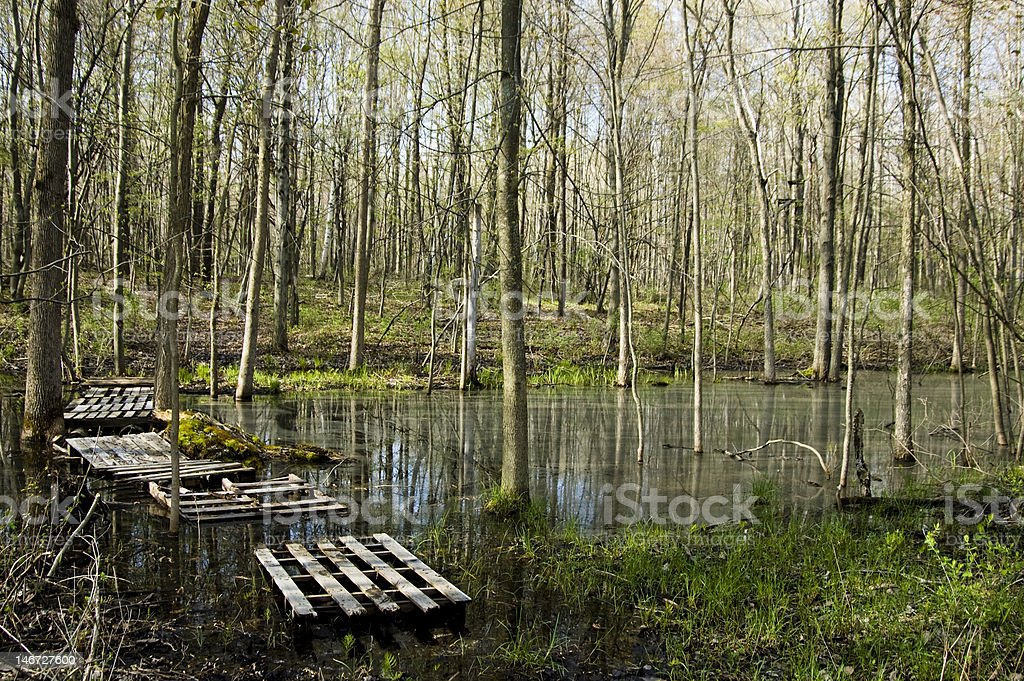 flooded stream with a crude bridge stock photo
