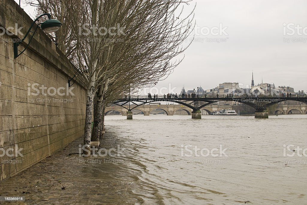 Flooding of the Seine with trees royalty-free stock photo
